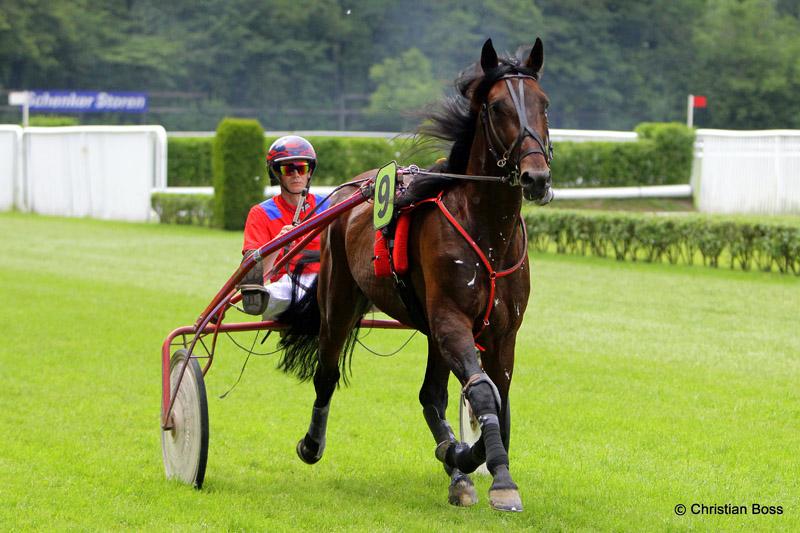 Pferdesport IMG_0302