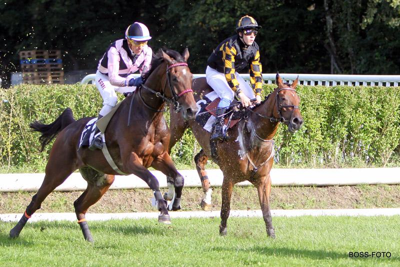 Pferdesport IMG_3809