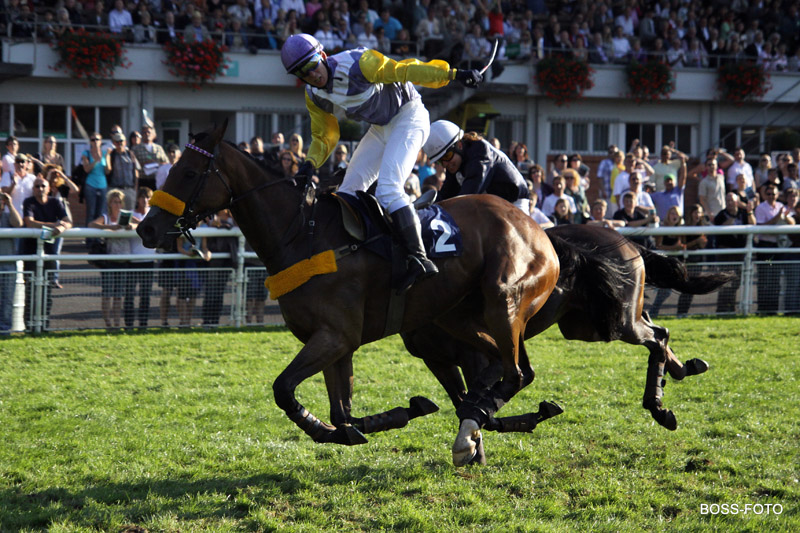 Pferdesport IMG_4258