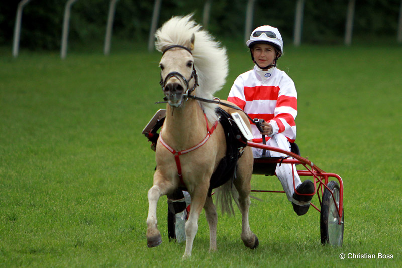 Pferdesport IMG_6031
