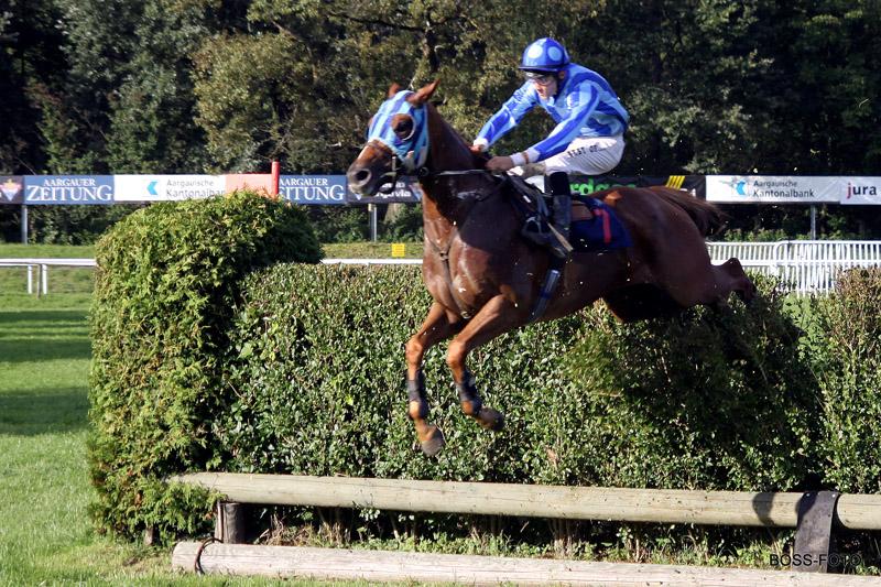 Pferdesport IMG_6118