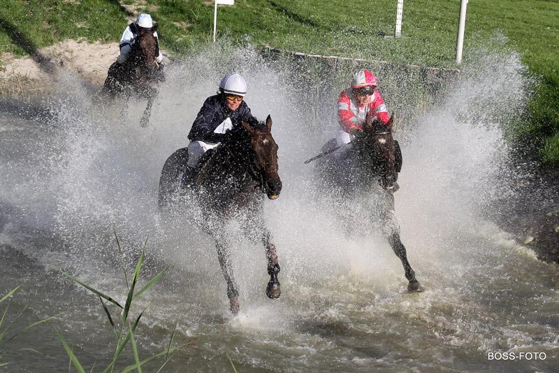 Pferdesport IMG_6174