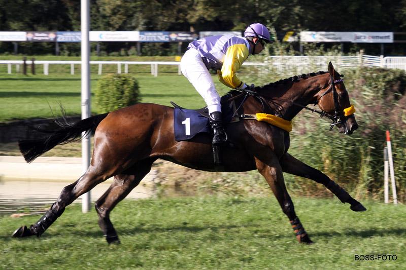Pferdesport IMG_6197