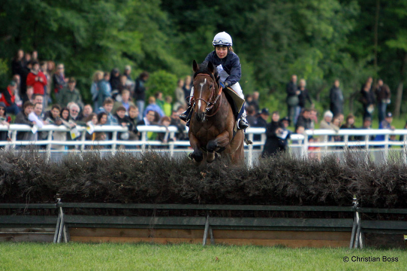 Pferdesport IMG_6392