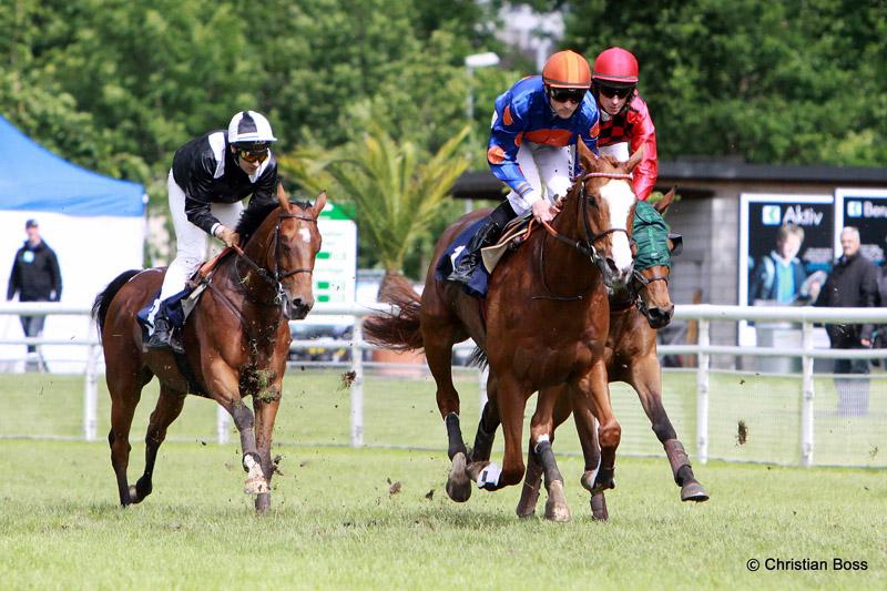 Pferdesport IMG_6402