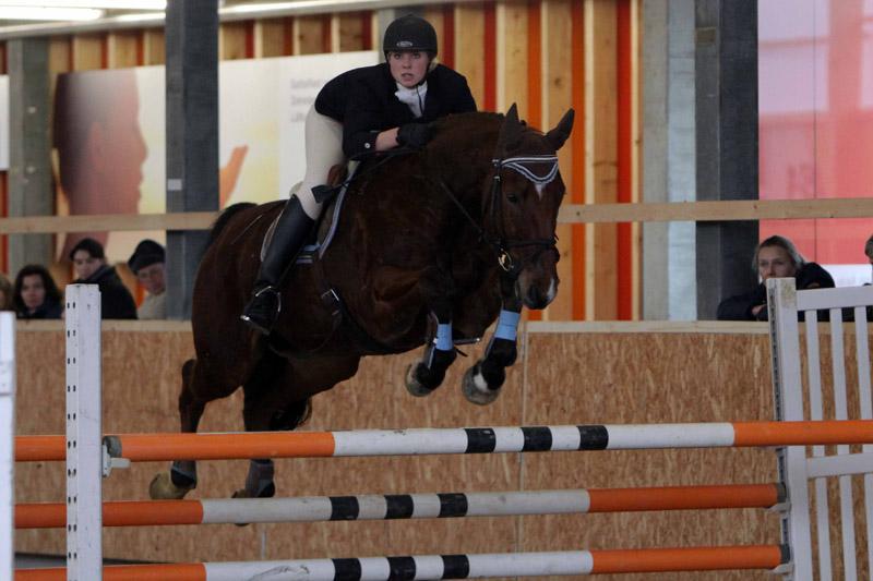 Pferdesport IMG_7381